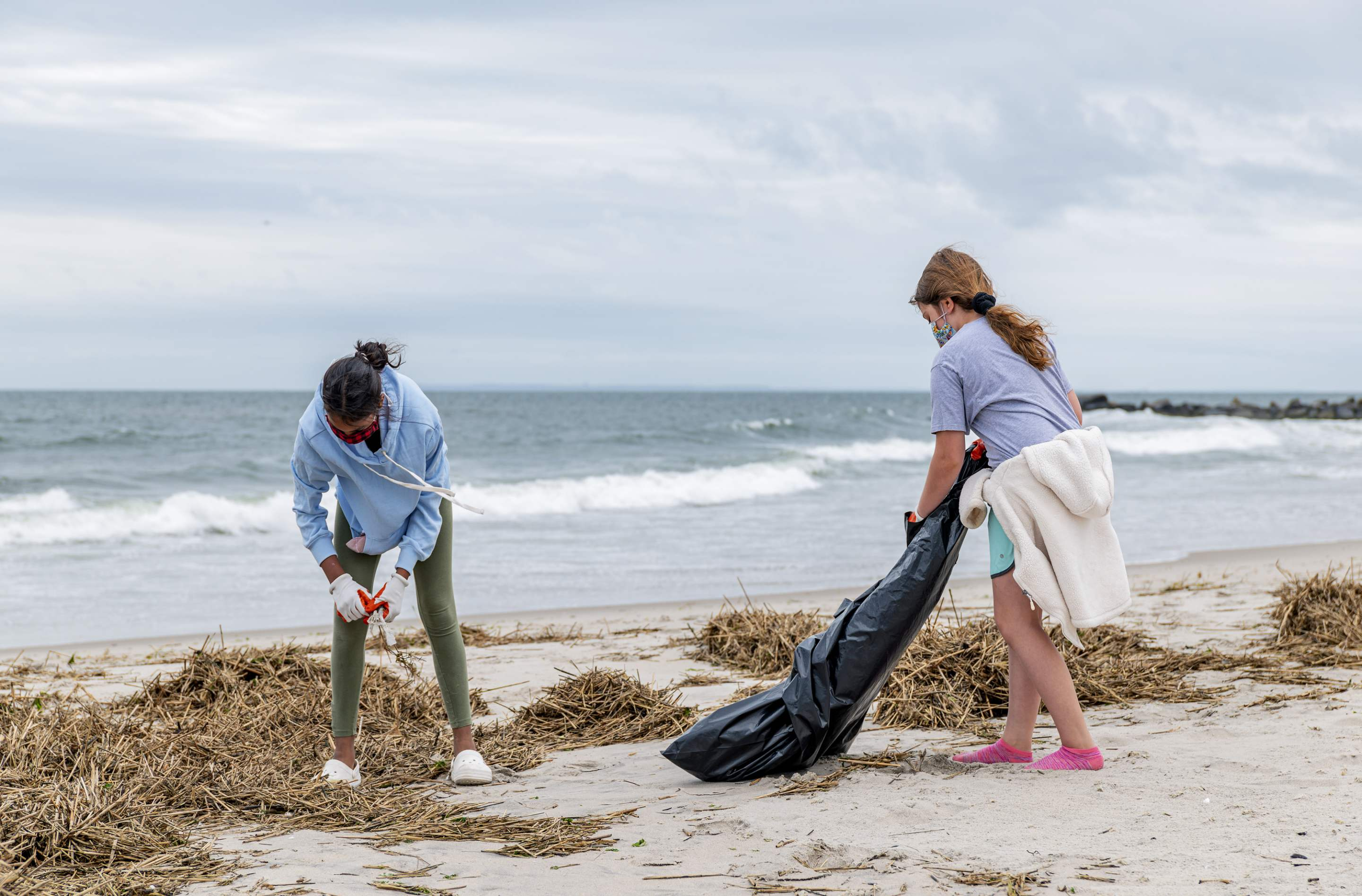 Beach Cleanup  preview
