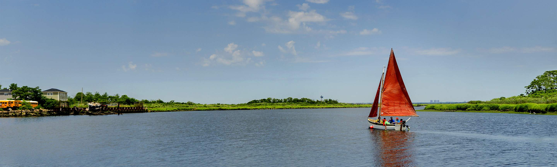 banner background photo